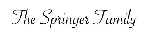 Springer Name